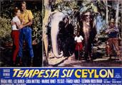 TEMPESTA SU CEYLON (Avventura in Ceylon)